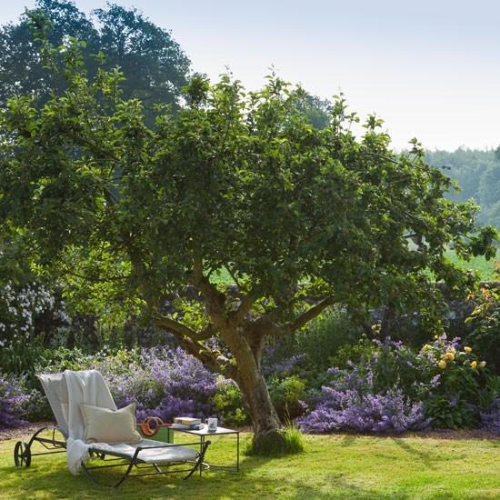 albero-giardino